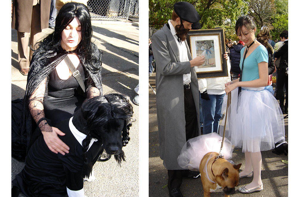 Fast DIY Halloween Dog Costumes