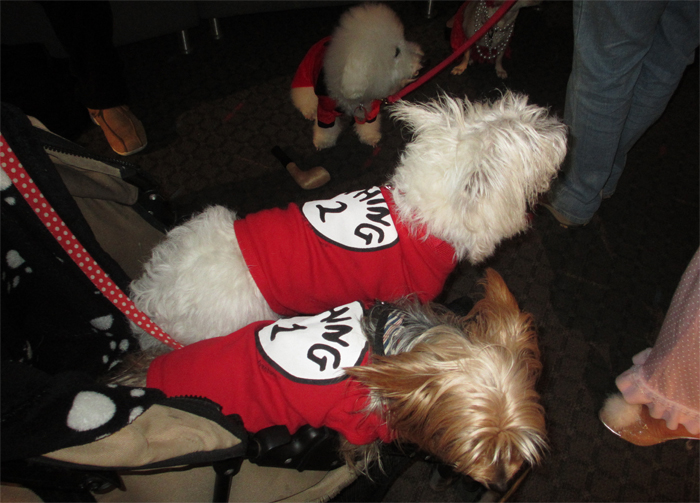Dogs In Costumes Celebrated Fashion Week A New York City Fundraiser & thing one and thing two halloween costumes for dogs - Hallowen ...