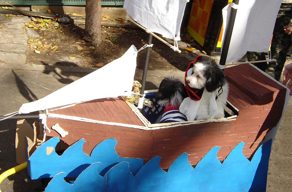 Halloween Dog Boat